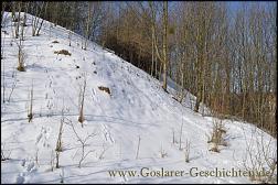 Klicken Sie auf die Grafik für eine größere Ansicht  Name:goslar petersberg bunker7.jpg Hits:29 Größe:453,5 KB ID:6521