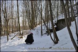 Klicken Sie auf die Grafik für eine größere Ansicht  Name:goslar petersberg bunker4.jpg Hits:32 Größe:498,5 KB ID:6525