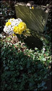 Klicken Sie auf die Grafik für eine größere Ansicht  Name:Friedhof-Grauhof-07.jpg Hits:13 Größe:248,2 KB ID:18009