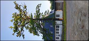 Klicken Sie auf die Grafik für eine größere Ansicht  Name:Fliegerhorst 1.jpg Hits:69 Größe:667,4 KB ID:19257