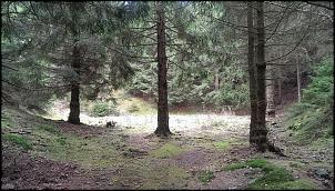 Klicken Sie auf die Grafik für eine größere Ansicht  Name:taternbruch goslar (1).jpg Hits:169 Größe:350,2 KB ID:14089